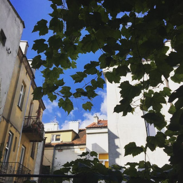 Wczoraj zapaam troch soca w Krakowieoldtown krakow oldbuilding klimat sunnydayhellip